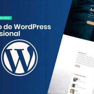 curso de wordpress profesional