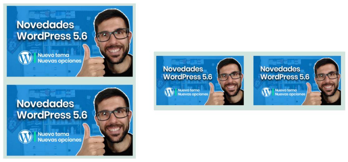 WordPress 5.6 - transformar a columna