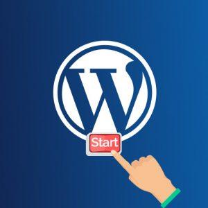 wordpress-starter-producto